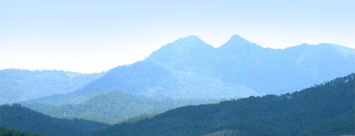 thaivien